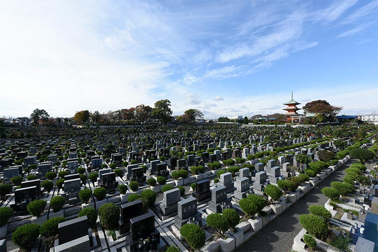 青葉園 墓地の風景